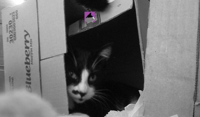 Butler in a box
