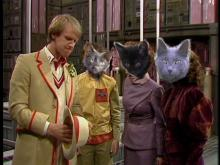 cats as companions of 5th doctor