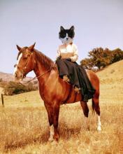 Schwarzie Prettycat riding sidesaddle