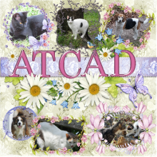ATCAD's picture