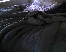 cat under comforter on bed