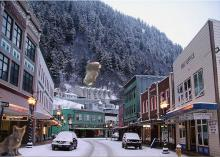 cats on the streets of Juneau