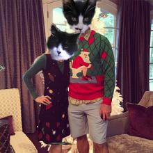 two cats in ugly Christmas sweaters
