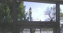 sparrow on door