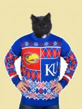 cat in ugly Kansas sweater