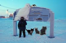 four cats at the Barrow welcome sign